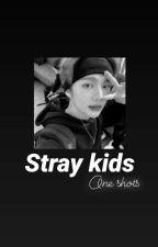 Stray Kids || one shots ✔ by Eruvin