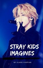 Stray Kids Imagines by gladecaspian
