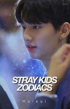 Stray Kids Zodiacs by muixui