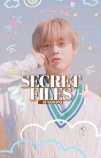 ▐ SECRET FILES. by WONY0UNG