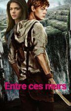~Entre Ces Murs... ( TOME 1 Le Labyrinthe: Newt )  by NoOne236