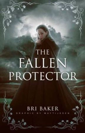 The Fallen Protector (Book 3) by BriBaker415