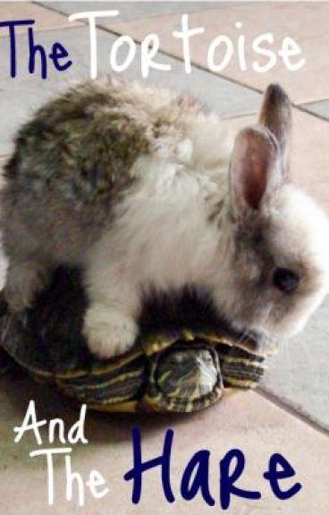 حThe Tortoise and The Hare