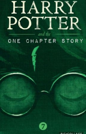 Harry Potter And The One Chapter Story by ThePilot44