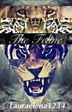 The Feline by lauraelena1234