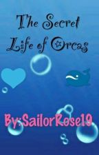 The Secret Life of Orcas by SailorRose19