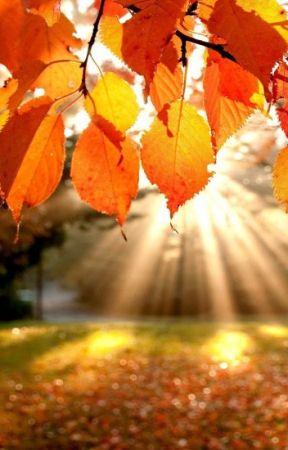 October Breeze by humdrumxheart