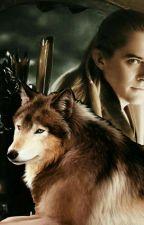 Avenia und die wölfe // Herr Der Ringe ff by Wolfqueen36