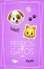 Perros y Gatos :3 by xngel-