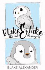 Blake the owl & Jake the penguin by darthowl