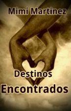 Destinos Encontrados by miimosaa26