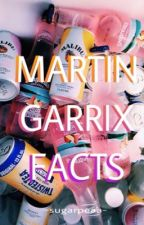 martin garrix facts[h u n] by csencsicska_