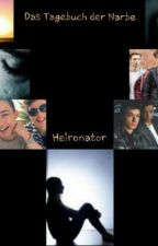 Das Tagebuch der Narben by Heironator