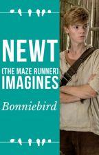 Newt ~ The maze runner Imagines by bonniebird