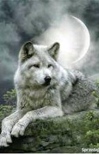 Znajdziesz mnie w blasku księżyca - PROLOG by Sharon-Darkness