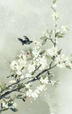 Tuyết rơi đầy Nam Sơn
