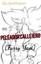 Peleador Callejero (Furry Yaoi) by LychDelgado