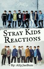Stray Kids Reactions by AlyJaeBum