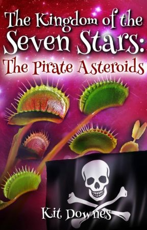 The Kingdom of the Seven Stars: The Pirate Asteroids by kdnorwich1