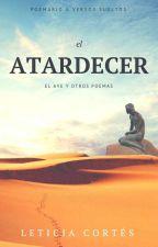 ATARDECER by amicortez00