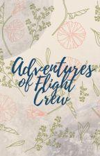 Adventures of Flight Crew by theCuppedCake