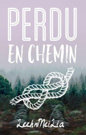 Perdu En Chemin by LeehnMeiLia