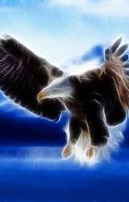 Der Flug des Adlers by LoveHeartWriter