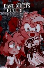 Past Meets Future (SONAMY and SHADRIA) ✔ by Anime-Sensei-Chan