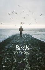 Birds by project_mayhem