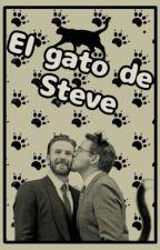 El gato de Steve by NaezEDG