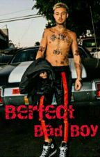 Perfect Bad Boy by user11458273