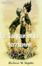Le Saiyan et la terrienne  by LeafAka