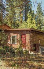The shack by BlackCatt1030