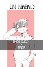 ❣️Un Niñero❣️(Sinichi Kudo x Reader) by Natsuki_kudo