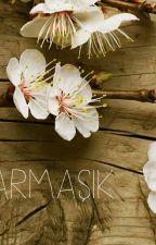 SARMAŞIK by user27164807