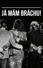 Já mám bráchu! (One Direction) by visperky