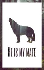 He is my mate by biggetjessquad
