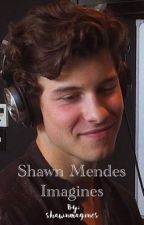 Shawn Mendes Imagines by shawnmagines