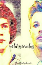 Wild Miracles | l.s | by followingthepanic