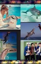 The fooo (delfiner) by pepsizendaya