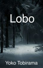 Lobo by YokoTobirama