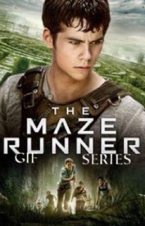 The Maze Runner GIF Series  by eclalvie