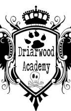 Driarwood Academy (Spy School Book 1) by NorthStarsWifey