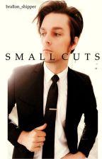 Small Cuts  by brallon_shipper