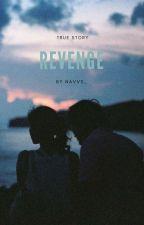 Revenge H.S by Navvs_