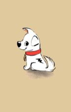 Bolt x Dog!Reader- Lightning~ by psycho_dog
