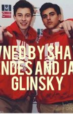 Owned By Jack Glinsky and Shawn Mendes by Mendes_Fanfictiom