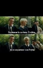 Pauberto Potter y sus aventuras by papdjm