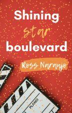 Shining Star Boulevard by Ross_N