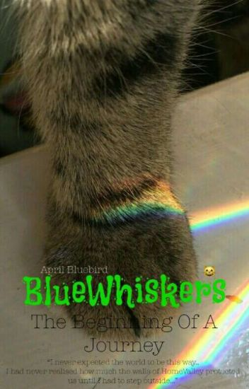 BlueWhiskers; The Beginning Of A Journey |✔ [A Cat Story \ A Cat Book]